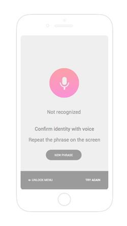 Voice not recognized