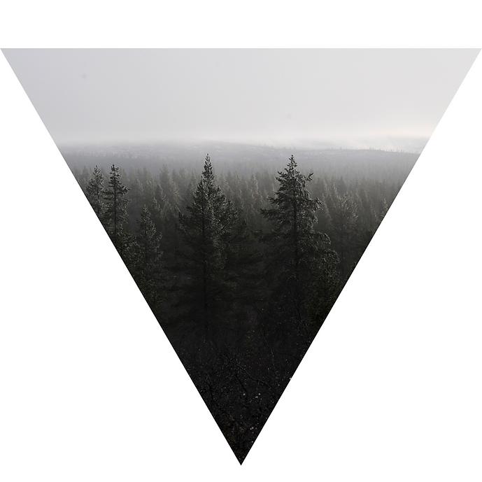 Lapin metsä.png