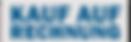 google-bewertungen-kaufen-rechnung.png