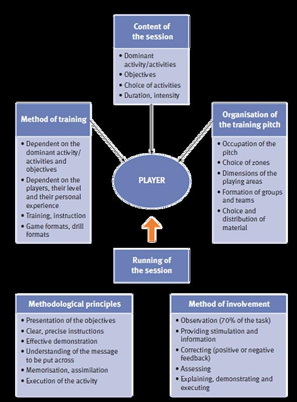 CIOACHING CHART4.png