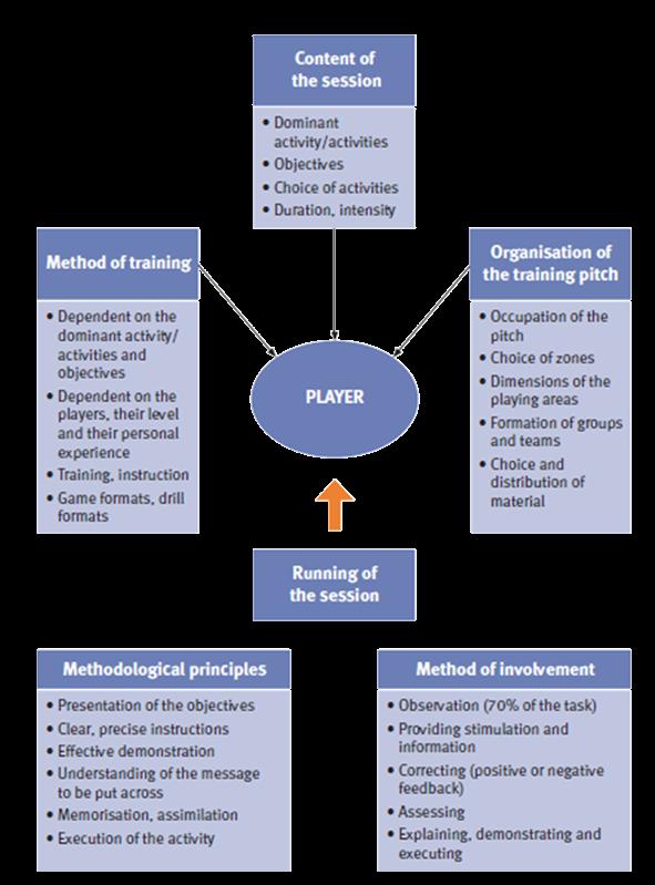 CIOACHING CHART2.png