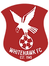 Whitehawk_F.C._badge.png