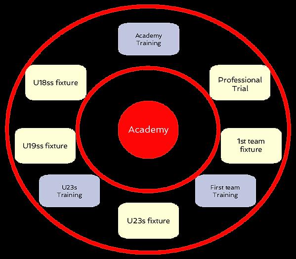 CIOACHING CHART6.png