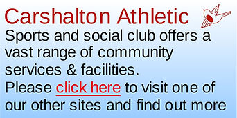choose another Carshalton Athletic Site