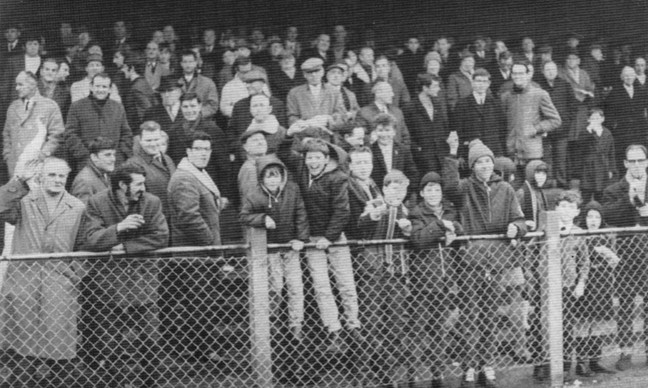 Robins fans 1950s