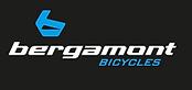 Bergamont Fahrrad Oldenburg kaufen