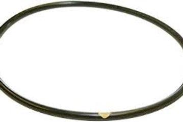 Hayward Chlorinator O-ring Made W/ Viton - CLX200K