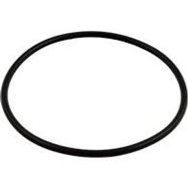 Hayward Strainer Cover O-ring - SPX1500P
