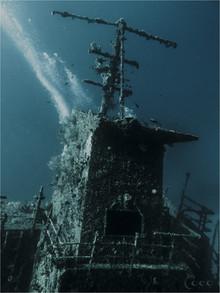 Odyssey Mast & Back Teal