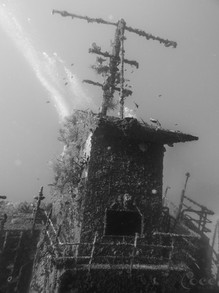 Odyssey Mast & Back B.W