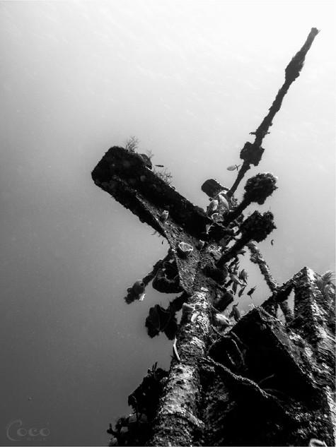 Odyssey Mast B&W