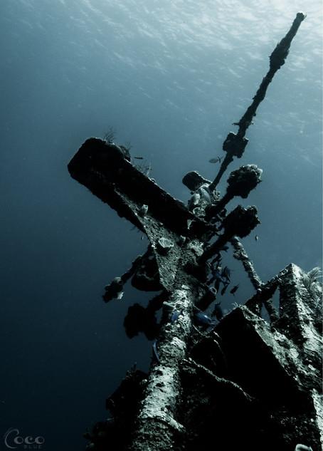 Odyssey Mast Teal