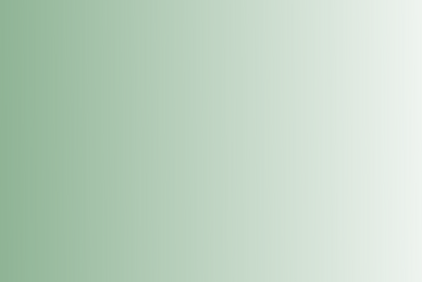 light colors for wix (1).png