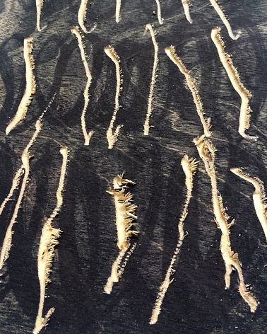 ZOOM IN of Fear of getting hurt, Budkalito woodcut object, Maple plywood, 5 3/4in x 8 1/4in by Ewa Budka