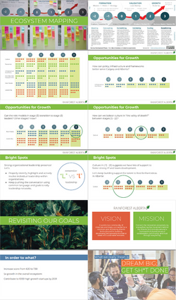 Rainforest 2020 case study pngs-02