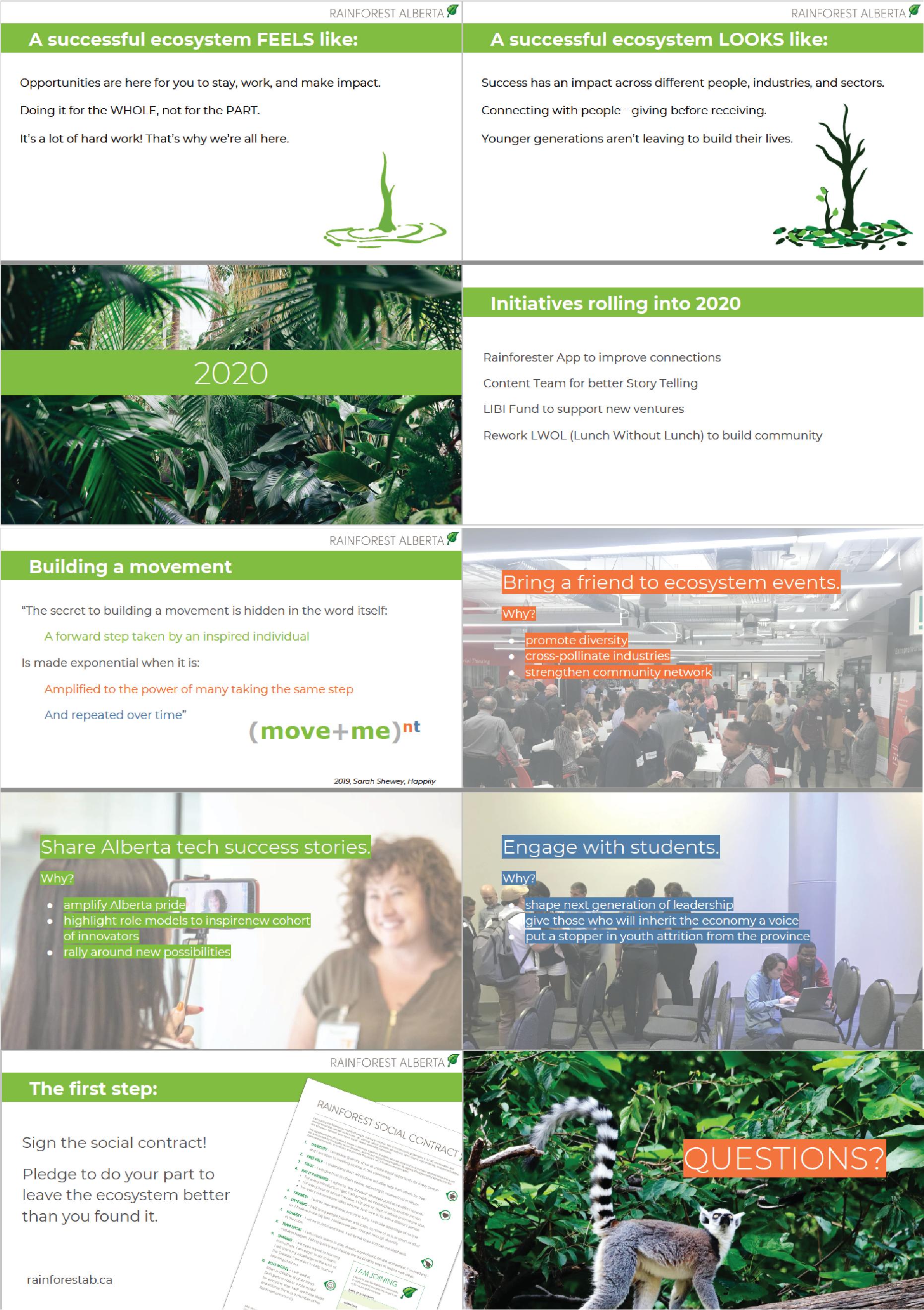 Rainforest 2020 case study pngs-03