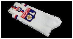 Sports tennis socks 2