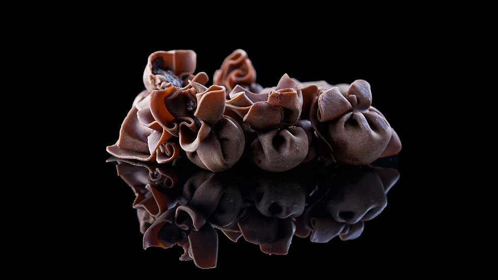 Fiocchi Chocolate