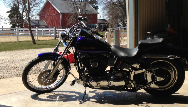 Harley Softail Custom 01_edited.png