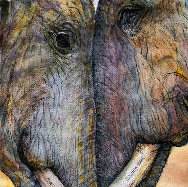 """Elephant Hug"""