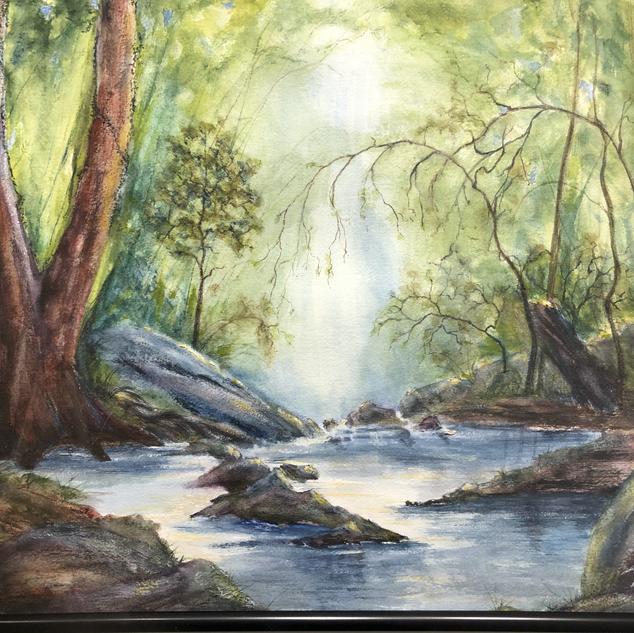 """""""Hidden Creek"""""""