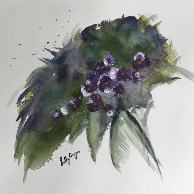 """""""Purple Violets"""""""