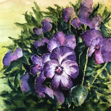 """Purple Infusion"""