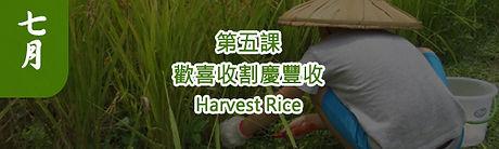 農藝復興第五課.jpg
