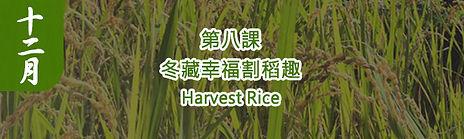 農藝復興第八課.jpg