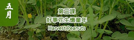農藝復興第三課.jpg