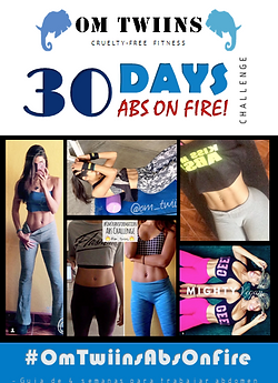 Abs on Fire Challenge -OmTwiins
