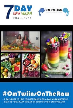 Raw vegan challenge- OmTwins