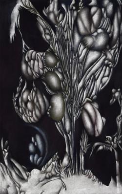 SIGOLAMUNA, 2021, Oel_Acryl auf Baumwolle, 80x50 cm