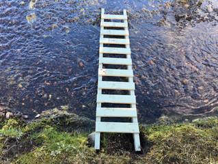 Himmel in Wasser, Wasser in Himmel. Oder: Steg oder Leiter? Die Kunst.