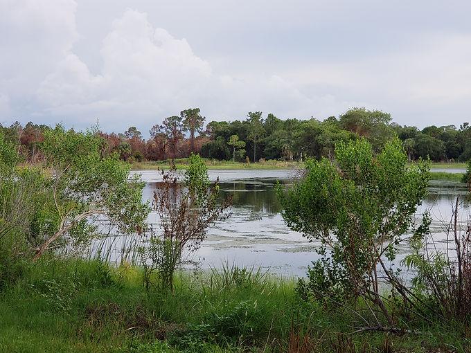 Lewis Lake.jpg