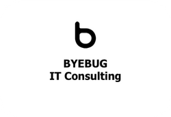 BYEBUG IT Consulting