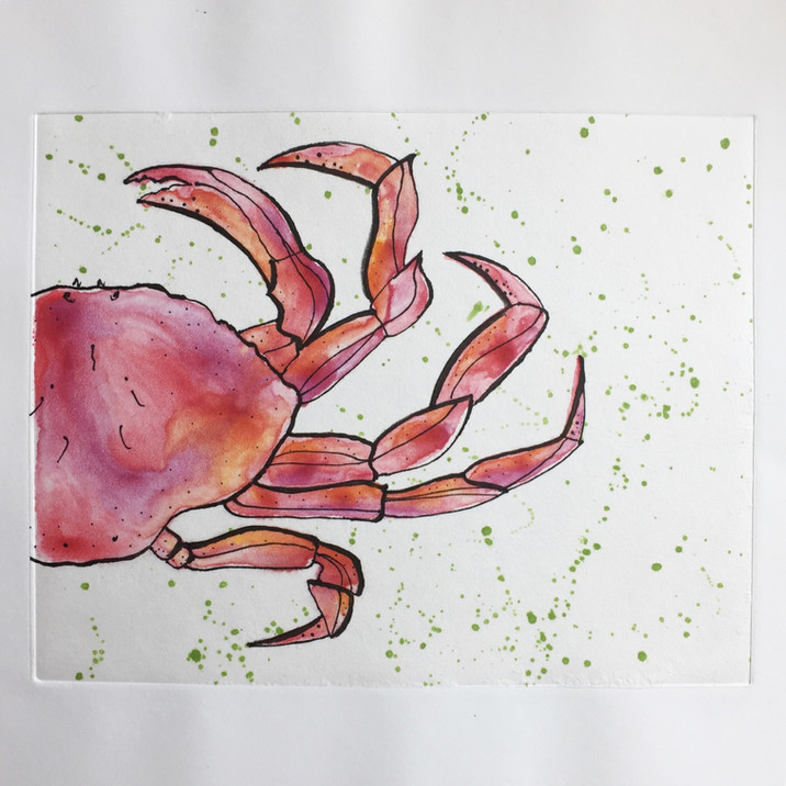 Dungeness Crab Monotype