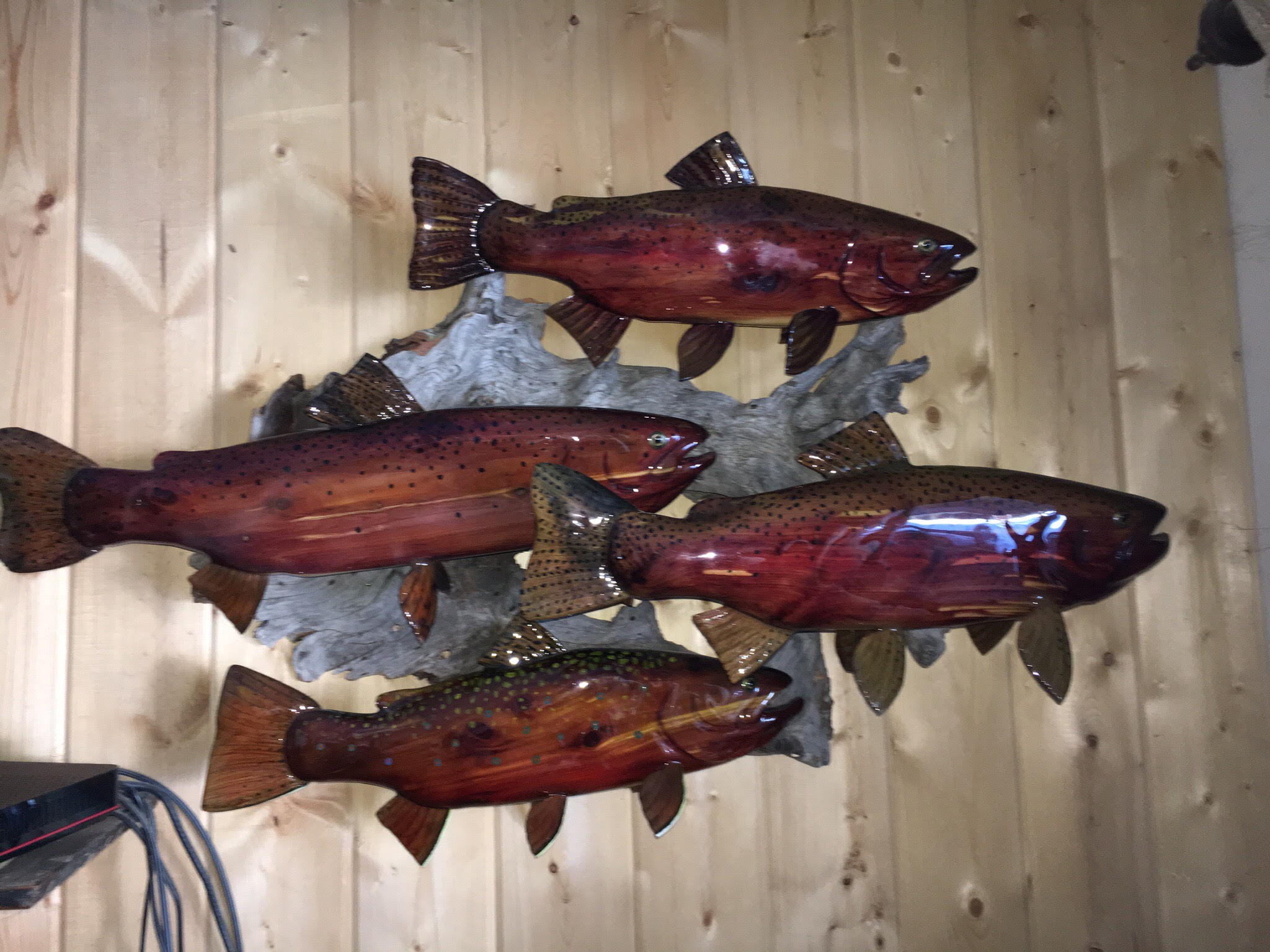 Trout Grouping