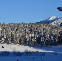 Montana winter skies