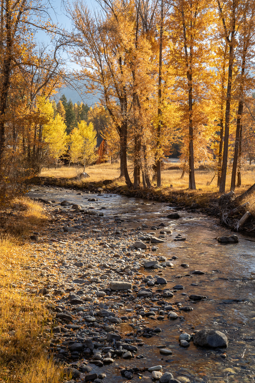 The magnificent colors of autumn are reflected in Grave Creek.