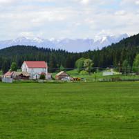 Montana farming