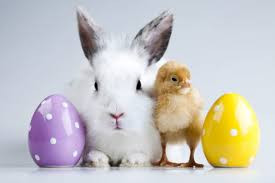 Easter Party (Grownups only)