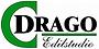 logo Drago Edilsudio.png