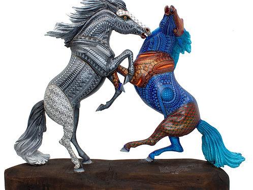 Elegant Horse Fight