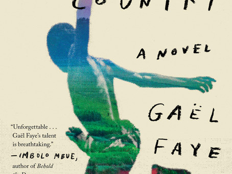A Rough Ride: A Review of Gaël Faye's Small Country