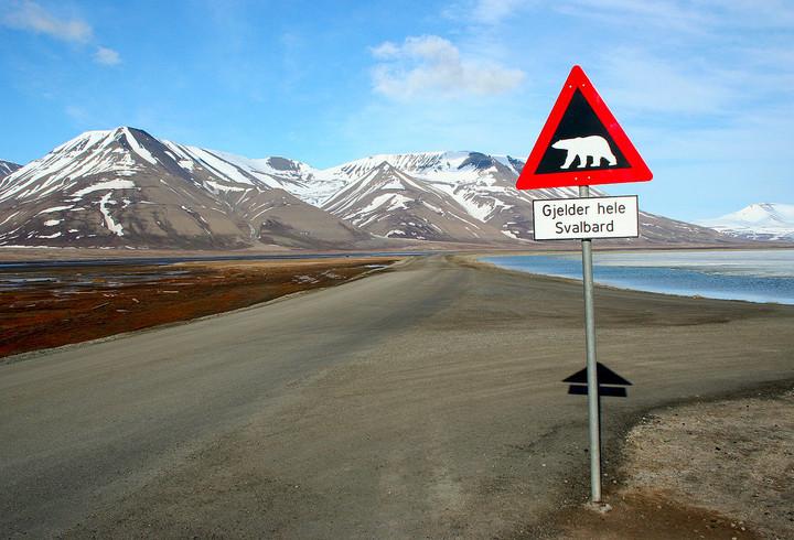 Polar Bear Sign in Svalbard