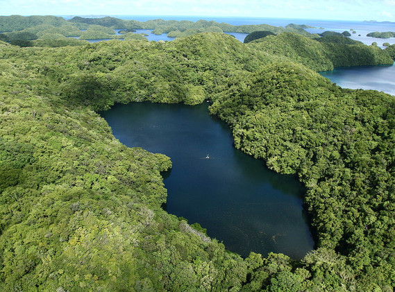 Palau's Jellyfish Lake from Above