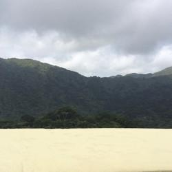 #elyunque #rainforest #puertorico