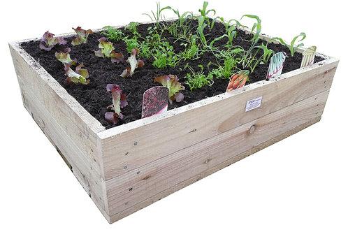 Vegetable Grow Box