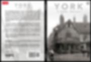 York A Rare Insight.png